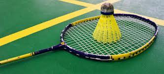 Badmintonschläger und Badmintonball